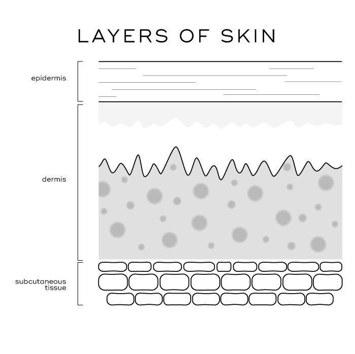 Skin Explained 2